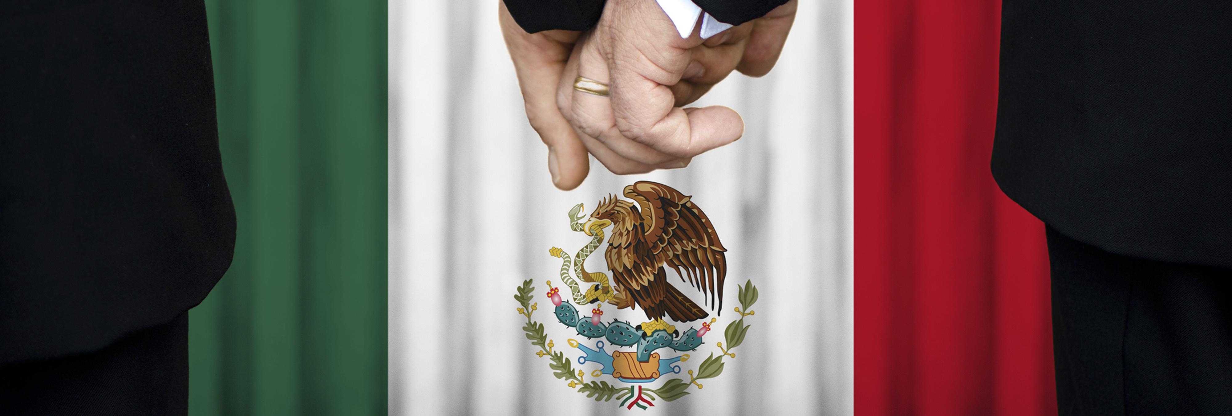 Una diputada mexicana compara el matrimonio homosexual con casarse con un delfín o un portátil