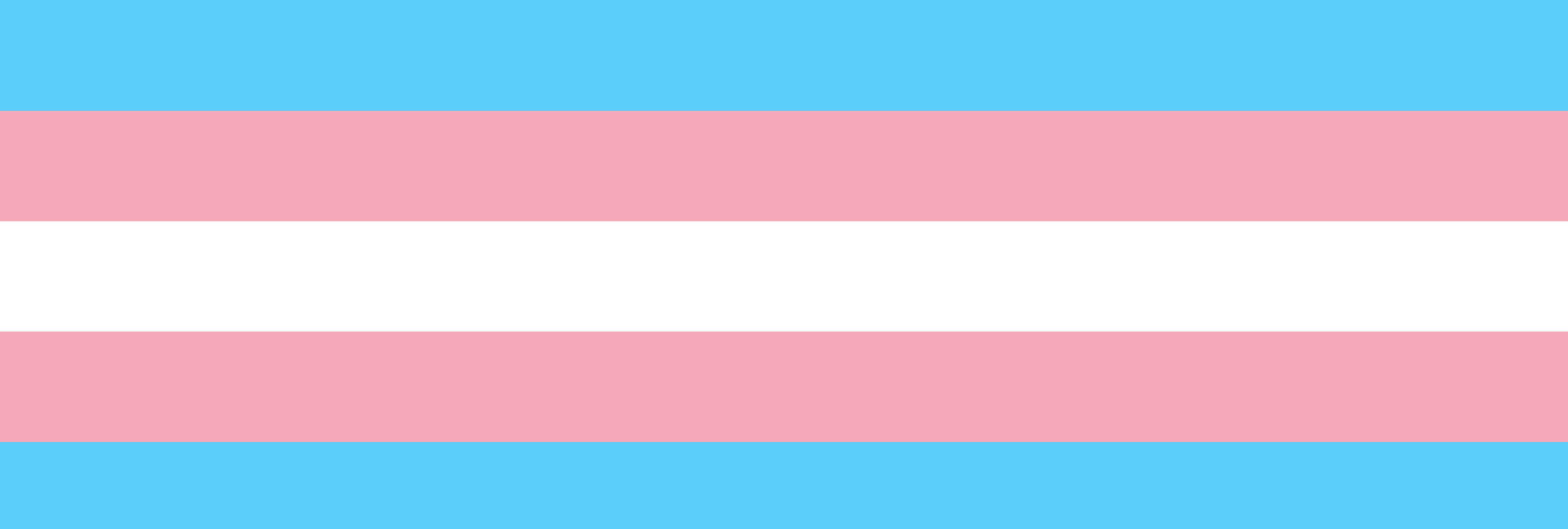 Casi 300 personas transexuales han sido asesinadas en lo que va de año