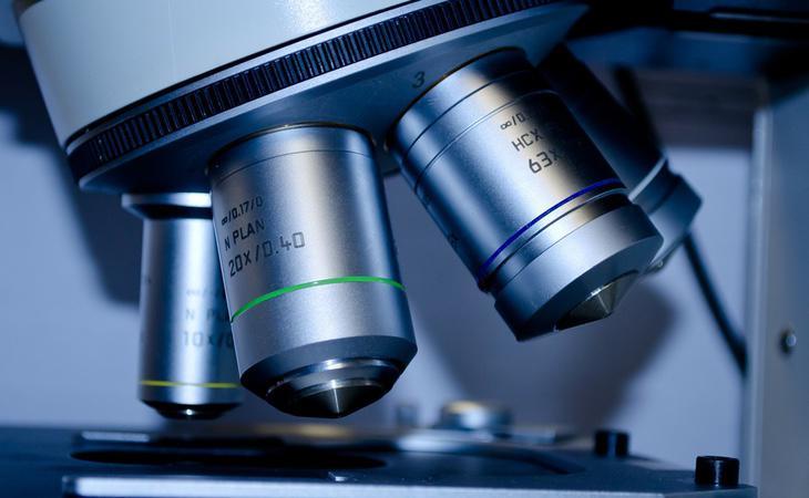 Si la ciencia avanzara lo suficiente, quizá J.S. podría ser curada y despertada