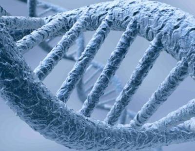 Por primera vez en la historia se criogenizará el cuerpo de una niña de 14 años