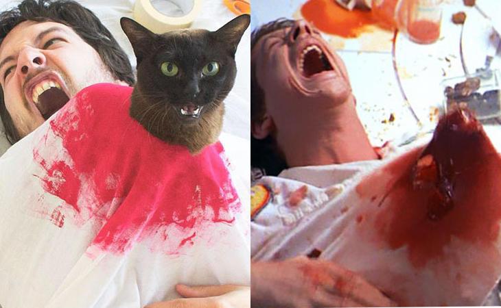 Mucho mejor un gato que un 'Alien'