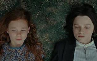 La teoría más tierna del universo 'Harry Potter'