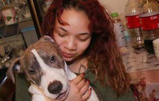 Un cachorro salva a una joven de ser violada