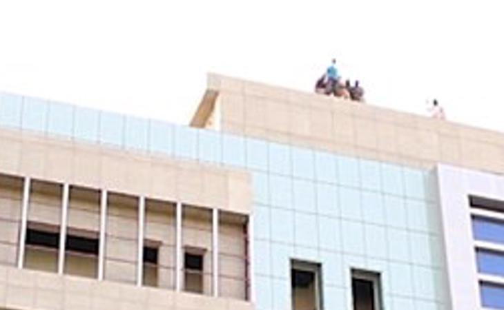 La forma de ejecución habitual para homosexuales es lanzarlos desde edificios