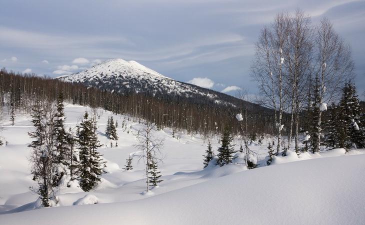Los peligros de Siberia incluyen osos, lobos y temperaturas extremas