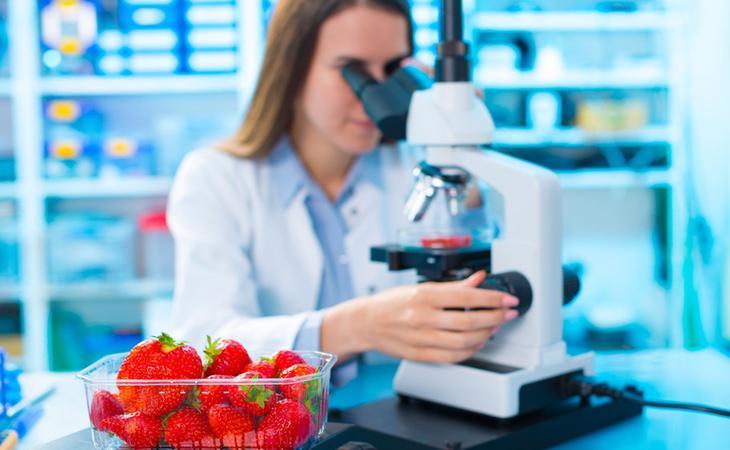 El paso de nuestros alimentos por los laboratorios puede ser la principal consecuencia