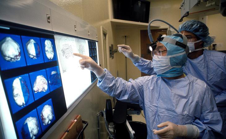 Masayuki Shinta examinó el extraño cerebro