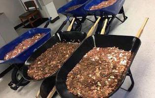 Paga con 300.000 monedas de un céntimo para vengarse de unos funcionarios