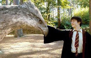 Buckbeak, el hipogrifo de 'Harry Potter', existe en el mundo real