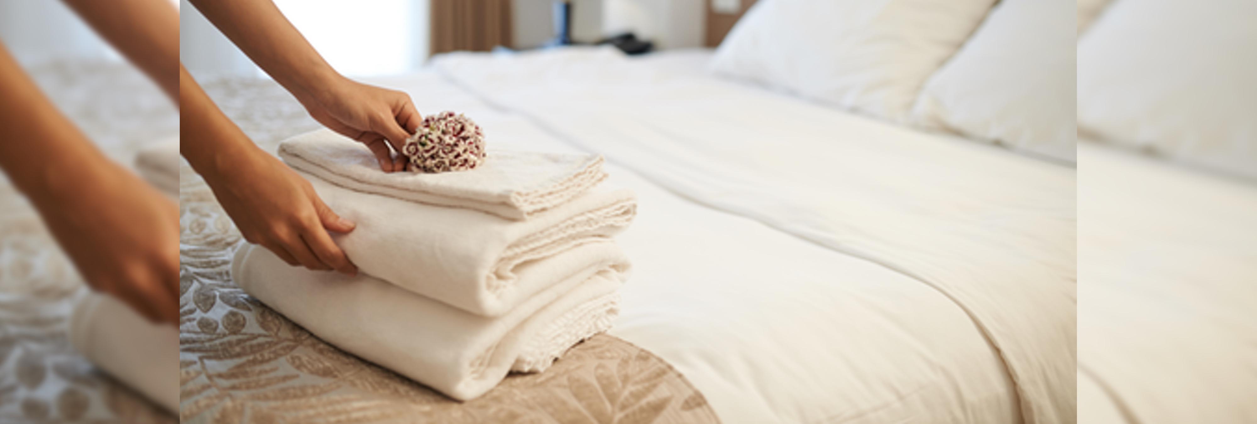 Los huéspedes de los hoteles prefieren ver Netflix que porno