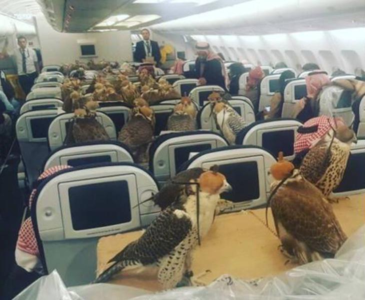 Desconocemos la conversación que mantendrían todos ellos durante tan largo vuelo