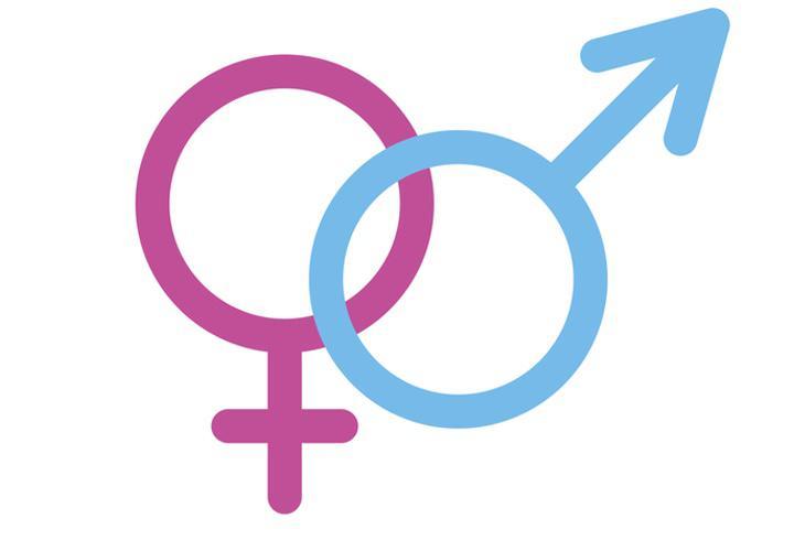 La campaña considera que hay que cambiar el sistema educativo para terminar con la imposición de los roles de género