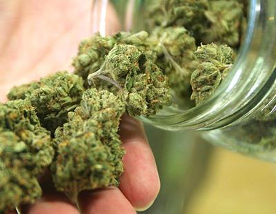 El cannabis puede cambiar completamente la vida de una persona, y no para mal