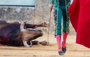 La Fundación Toro de Lidia irá a los tribunales porque la tauromaquia no está incluida en el bono cultural