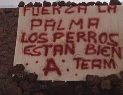 El misterioso Equipo A que se atribuye el rescate de los perros amenazados por el volcán de La Palma