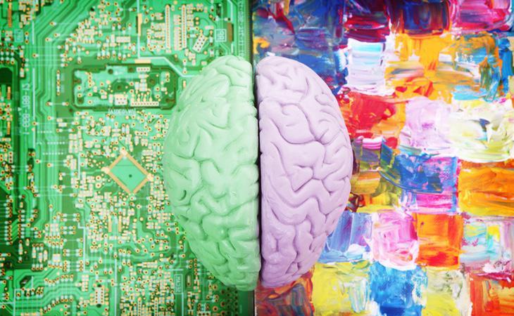 El cerebro no influye en ser zurdo o diestro