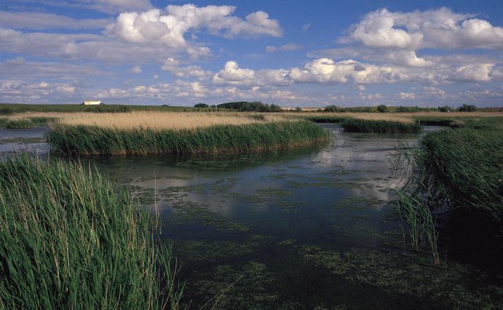 Algunos humedales como el de las Tablas de Daimiel, en Ciudad Real, podrían convertirse en un auténtico desierto