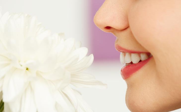 La incapacidad de reconocer olores puede estar relacionado con el riesgo de muerte prematura