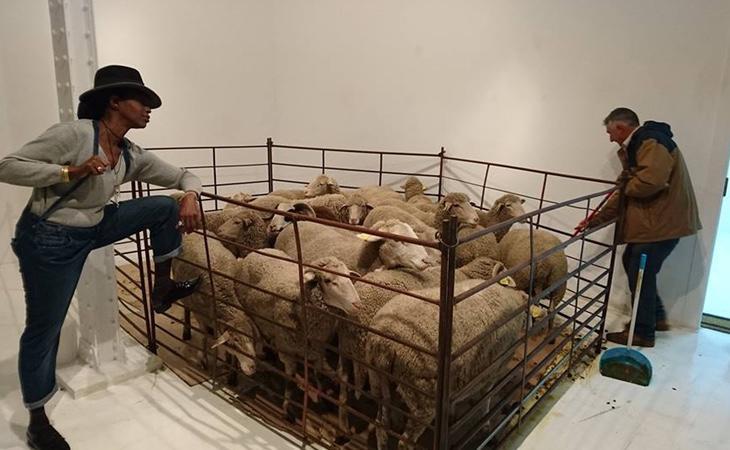 El hacinamiento de los animales ha sido ampliamente criticado