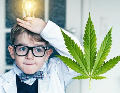 Los niños inteligentes consumirán más drogas y alcohol en su adolescencia y madurez