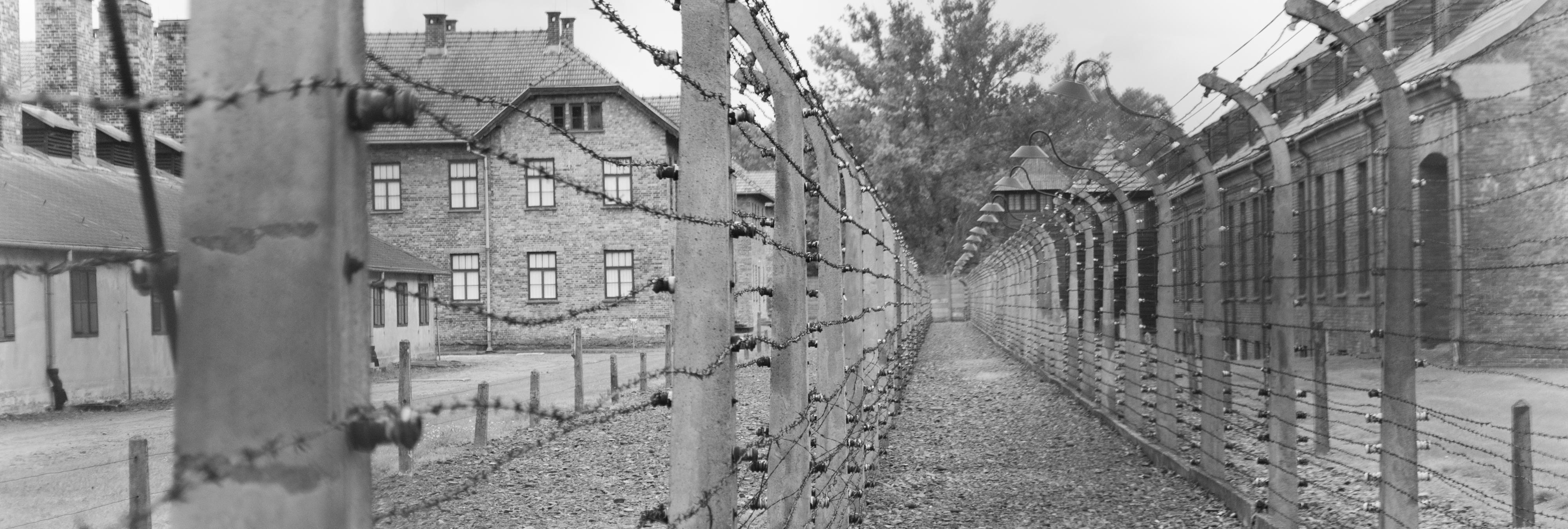 """Carmen Riolobos, senadora del PP: """"Los que tenemos tendencia a engordar hubiésemos sobrevivido el holocausto nazi"""""""
