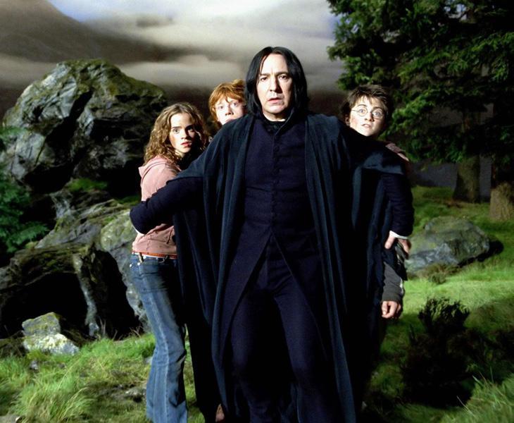 Snape se había postulado como uno de los enemigos de Harry, pero al final se descubre que estaba protegiéndolo desde las sombras