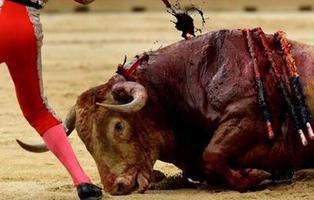 PACMA convoca una manifestación antitaurina para la Feria de Abril de Sevilla