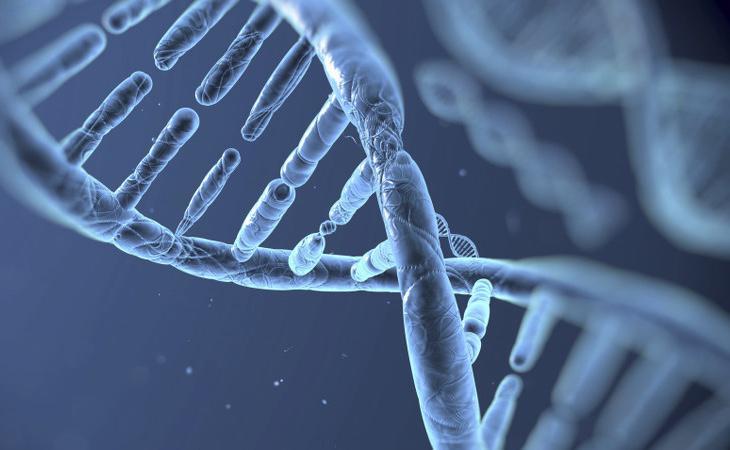 La genética puede ser determinante para desarrollar ciertas adicciones