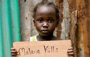 La OMS gasta el triple en viajes que en la lucha contra el VIH, la malaria y la hepatitis juntas