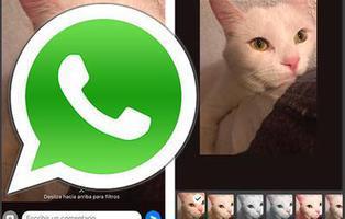 WhatsApp añade filtros y álbumes para fotografías en los iPhone