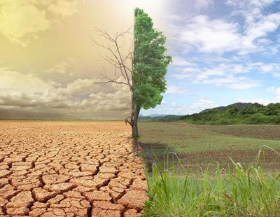 La mitad de la humanidad enfrentará olas de calor letales en 2100