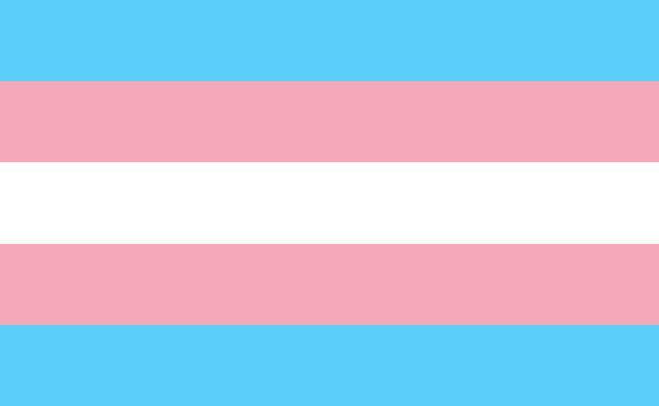 La comunidad trans es la más discriminada del colectivo LGTBI