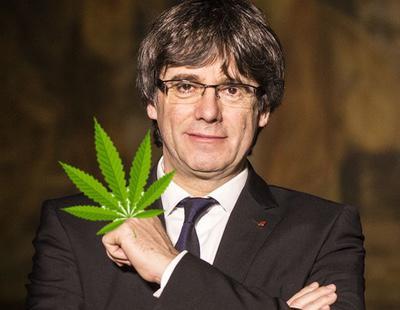 Cataluña elabora una ley para regular el cultivo, consumo y tráfico de cannabis