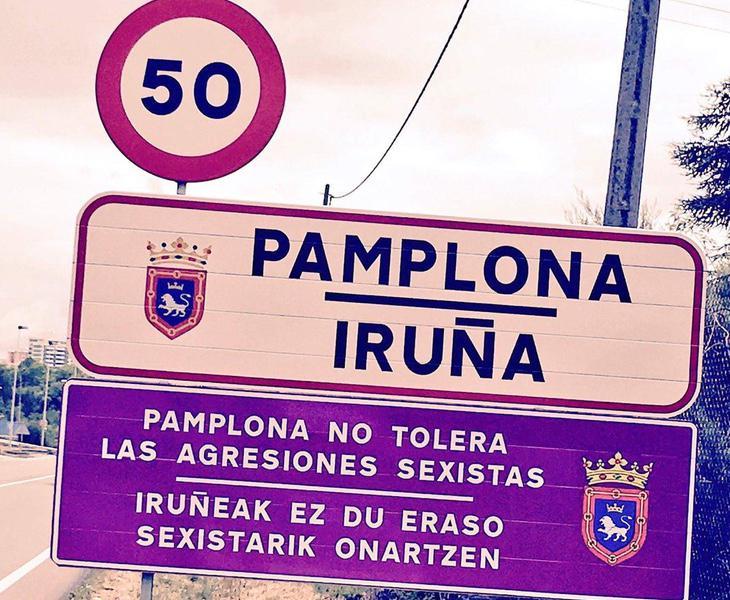 El ayuntamiento de Pamplona ha lanzado una campaña para terminar con esta lacra