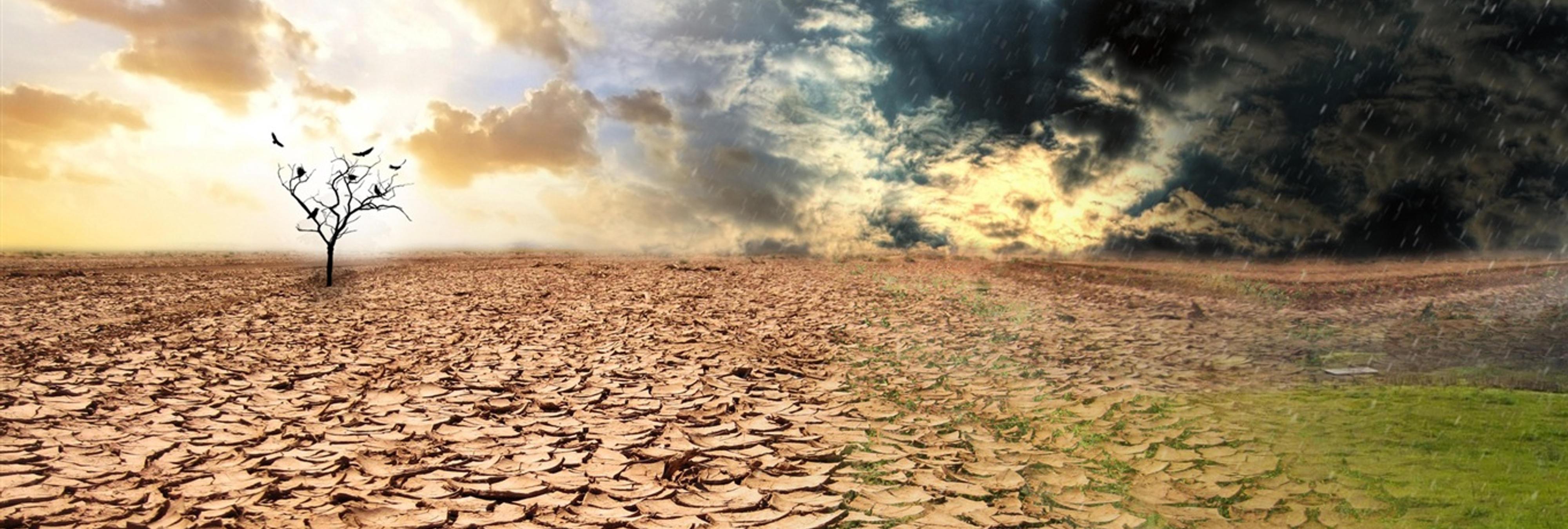 La Tierra enfrenta una extinción masiva similar a la de los dinosaurios, según la biología