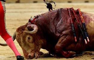 Baleares prohíbe las corridas de toros con muerte