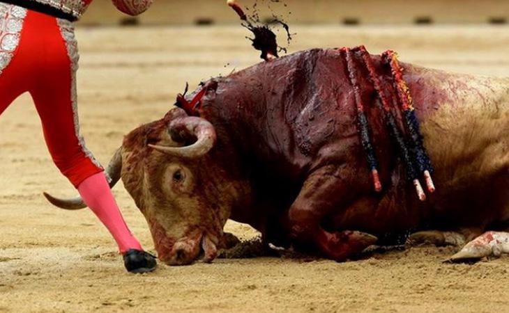 El Gobierno considera que los toros son patrimonio cultural de todos los españoles