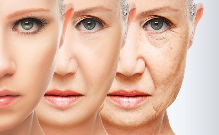 La solución al envejecimiento podría estar en nuestro cerebro