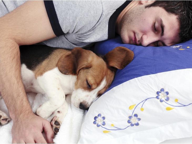 El sueño está directamente relacionado con el tamaño de nuestra cintura