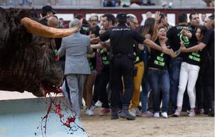 Detienen a 29 activistas antitaurinos por asaltar la plaza de las Ventas