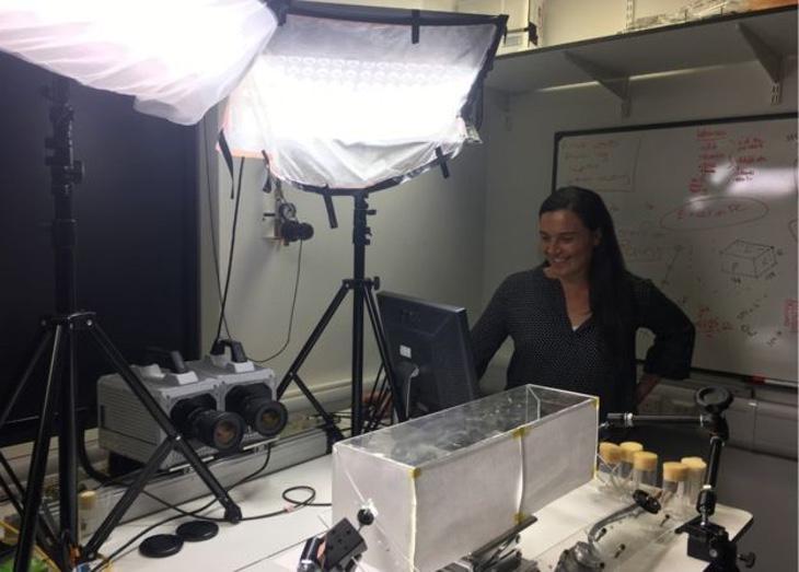 Doctora Paloma Gonzales-Bellido en su laboratorio