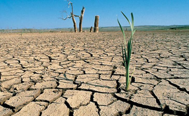 El cambio climático provoca hambrunas debido a sequías e inundaciones