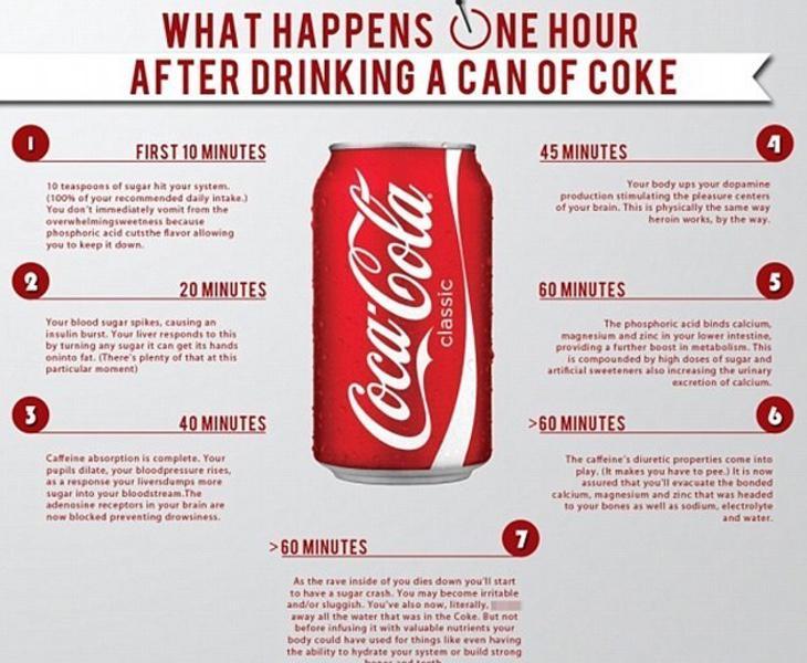 Una sola lata de Coca-Cola produce efectos dañinos minutos después de consumirla