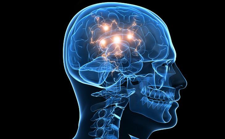Las respuestas cerebrales son similares a las que produce la heroína