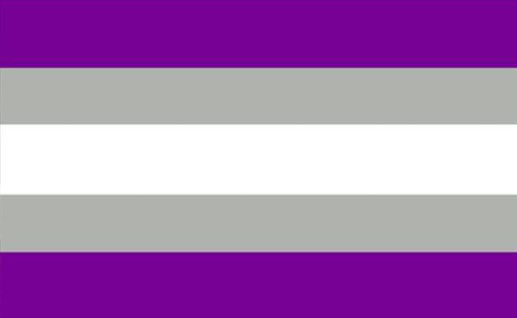 Bandera grisexual