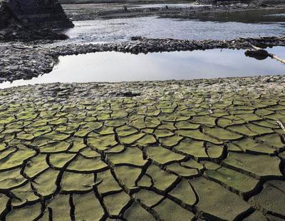 Sequía en España: Las lluvias descienden un 97% y el Gobierno plantea restricciones