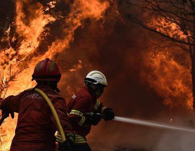 Los incendios forestales provocados alimentan la corrupción política y empresarial