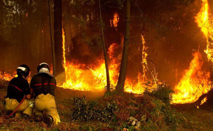 El PP ha desplegado su argumentario en los medios para afirmar que los incendios han sido provocados por terroristas medioambientales