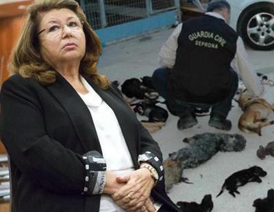 Tres años y nueve meses de prisión a la dueña de la protectora que exterminó a 2.200 perros y gatos