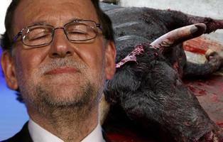 Rajoy recurre al TC la ley de toros balear que prohíbe torturar y matar al animal